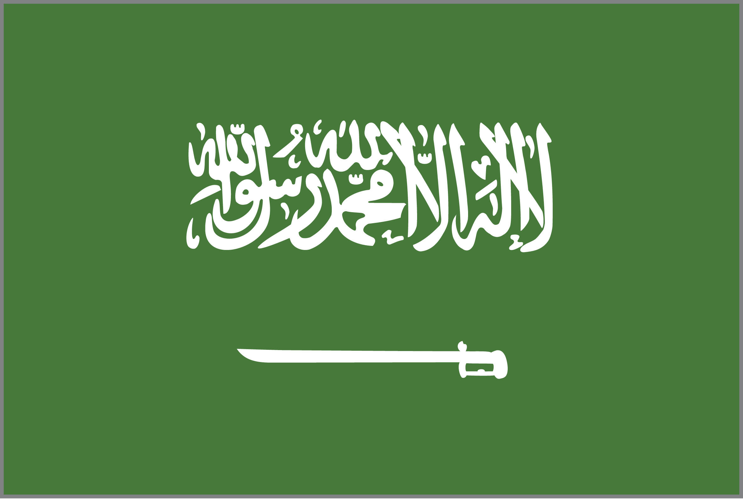 Saudi Arabia has launched a new defence trade show, which will hold its inaugural event in 2022. (Getty Images)